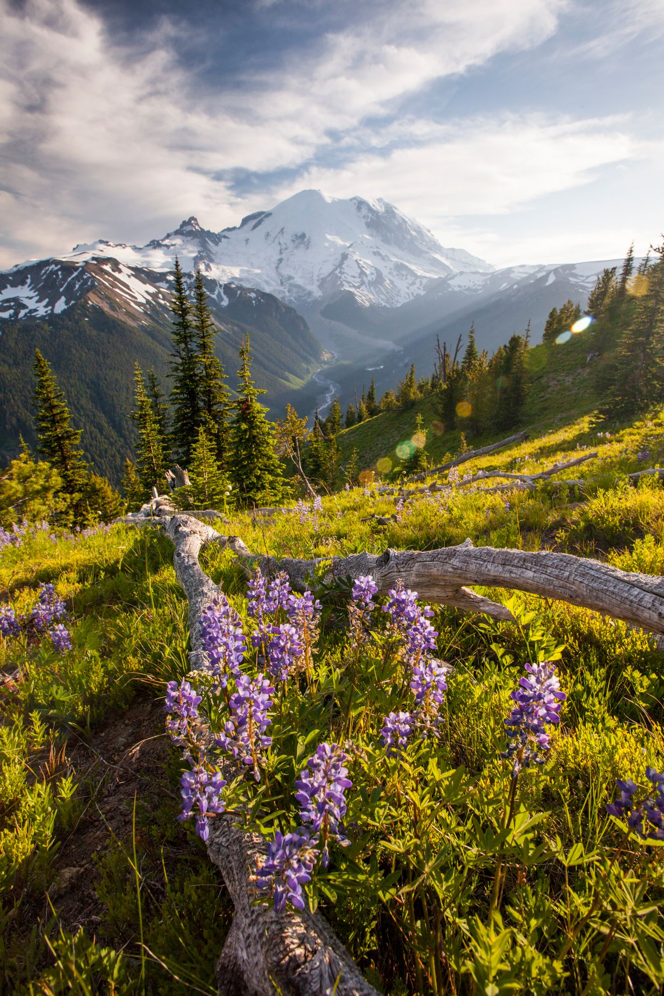 51 Photos That Prove America Truly Is Beautiful Landscape Photography Landscape Landscape Pictures