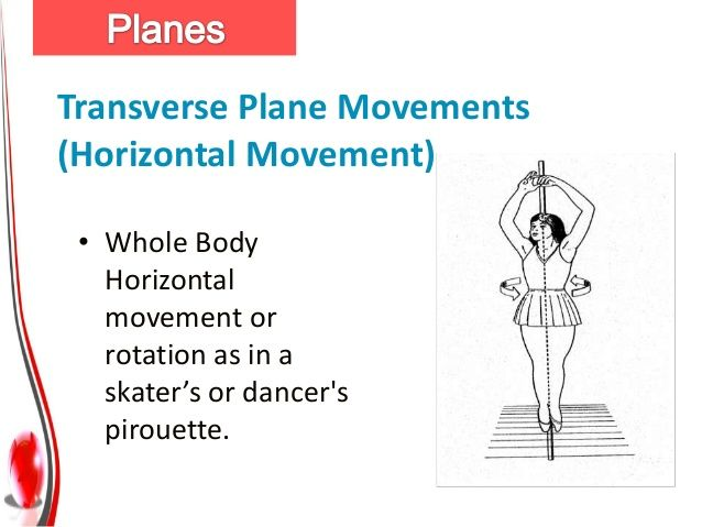 Transverse Plane Movements Horizontal Adduction And Abduction Are