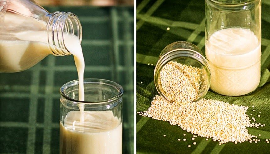 Cmo preparar leche de Quinoa  alimntame  Quinoa milk Vegan milk y Food