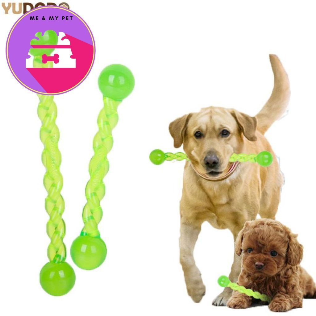 Pet Training Chew Toy Dog teeth, Pets, Dog toys