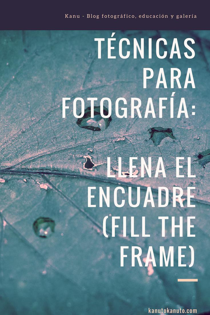 Técnicas para fotografía: Llenar el encuadre (fill the frame). Lo ...