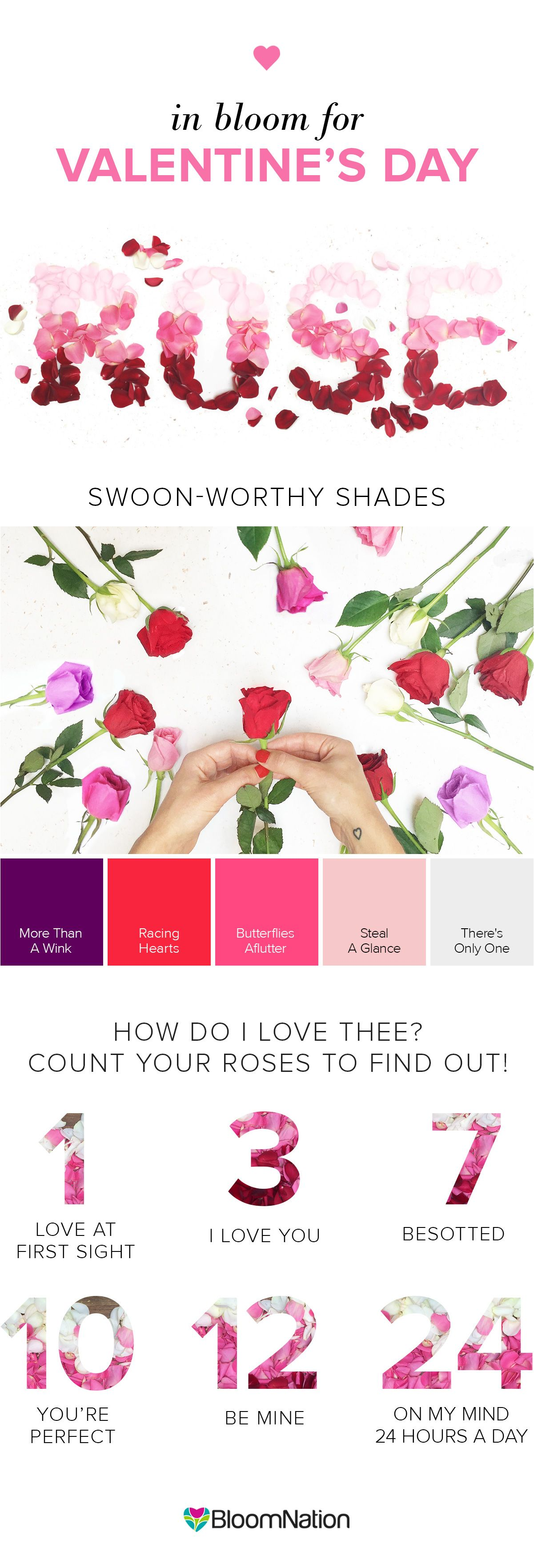 What Is The Meaning Of A Rose Check Out The Meaning Behind How Many