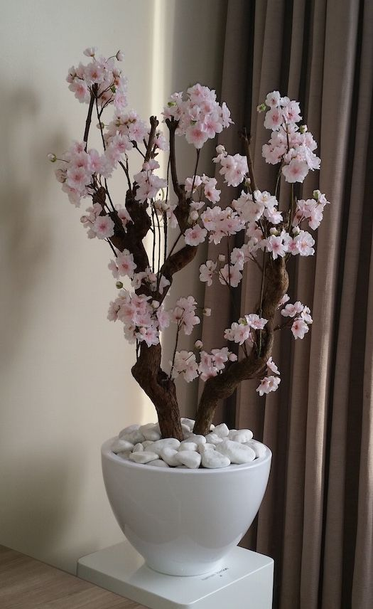 Hedendaags Bloesemboom licht roze M   Bloesembomen, Bloesem, Rozen KG-38