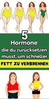 Photo of 5 Hormone, die du zurücksetzen musst, um schneller Fett zu verbrennen  5 Hormon…