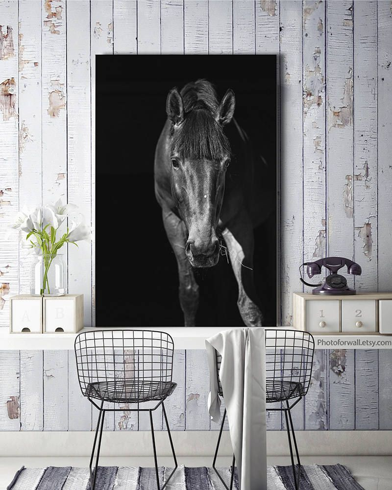 Horse Decor Photography Black And White Large Canvas Art Bathroom Rustic Print Giclee Tack By Photoforwall