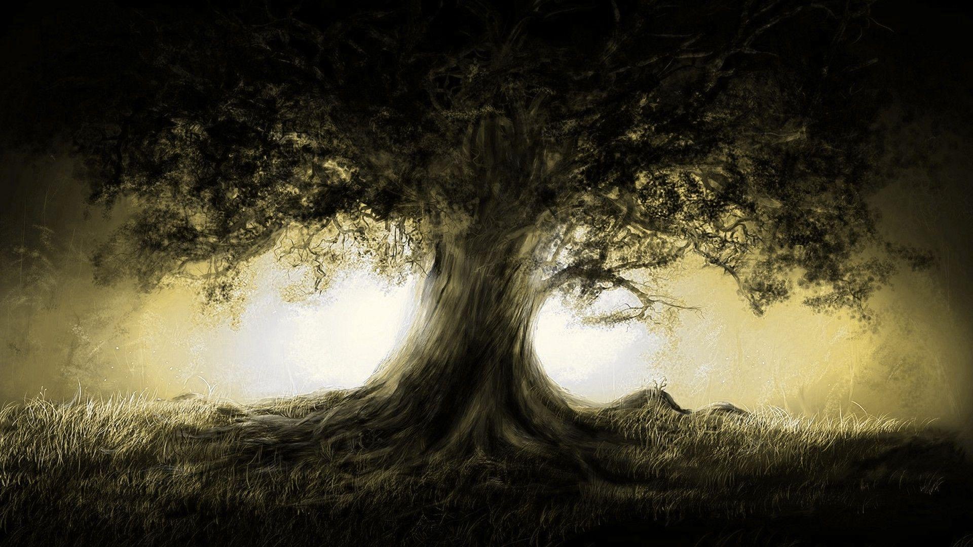 Picture Trees Foreground Dark Background Light Download Wallpapers Download Light Nature Trees Dark Gold Fantasy A Dark Fantasy Art Dark Fantasy Fantasy Art