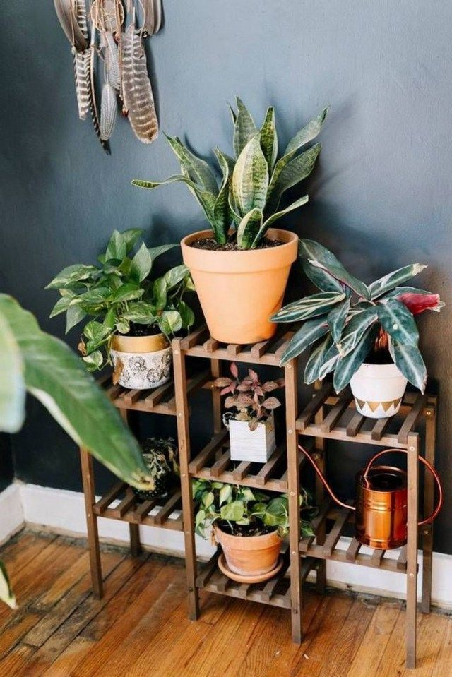 simple house plants indoor decor ideas home decoration pinterest and also rh