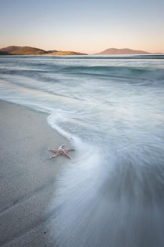 Photographic Print: Starfish and Flowing Tide at Luskentyre Losgaintir Beach, Isle of Harris, Outer Hebrides, Scotland by Stewart Smith : 24x16in #outerhebrides Photographic Print: Starfish and Flowing Tide at Luskentyre Losgaintir Beach, Isle of Harris, Outer Hebrides, Scotland by Stewart Smith : 24x16in #outerhebrides Photographic Print: Starfish and Flowing Tide at Luskentyre Losgaintir Beach, Isle of Harris, Outer Hebrides, Scotland by Stewart Smith : 24x16in #outerhebrides Photographic Prin #outerhebrides