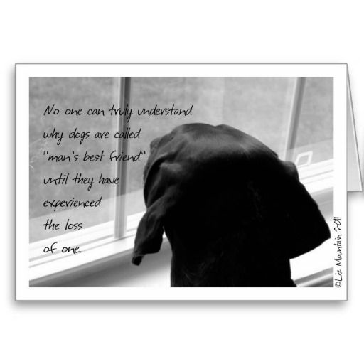 Sympathy Dog Quotes: Kindred Spirit Sympathy Card-Loss Of Pet Dog. An Endearing