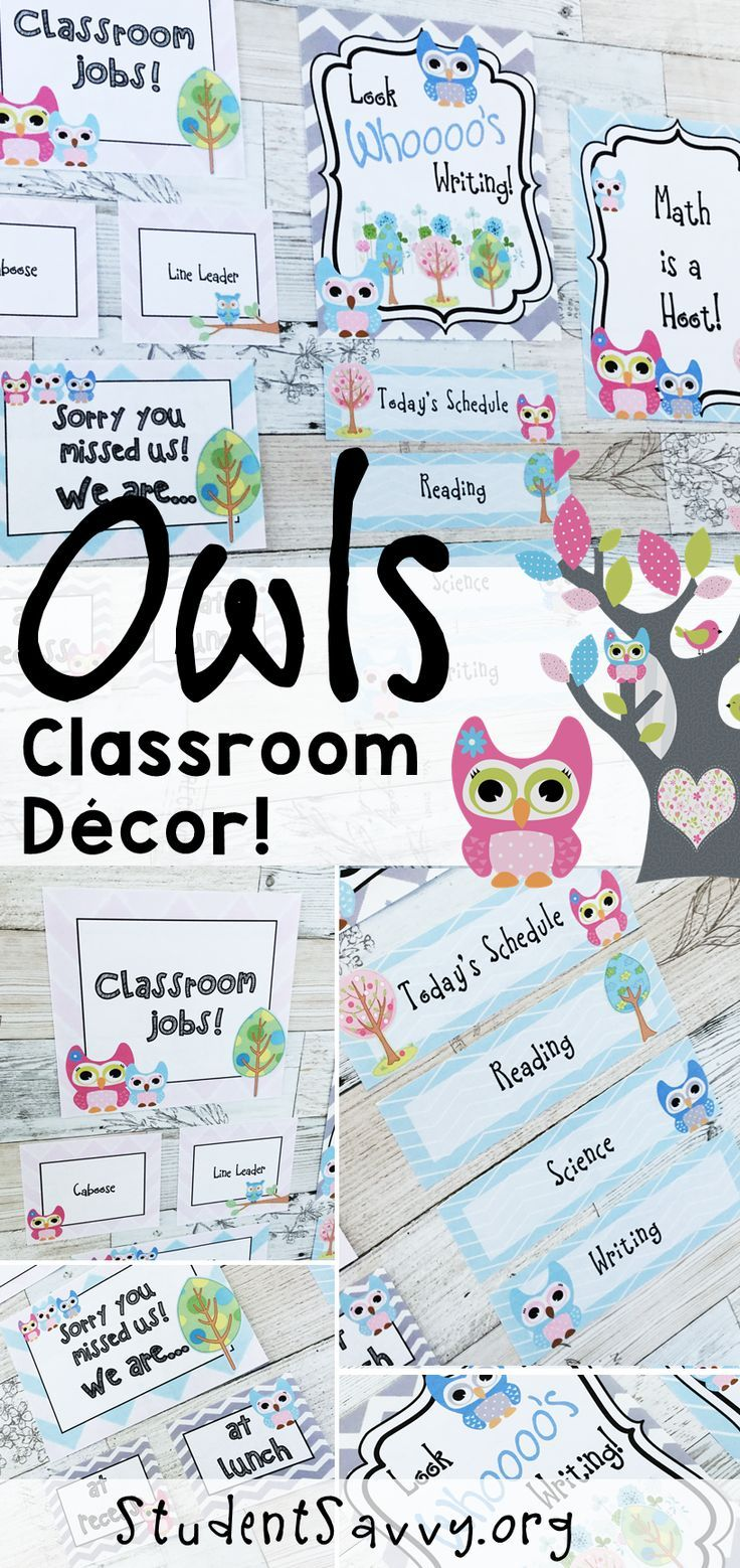 Owl Classroom Decor (Editable) | 1st Grade Activities | Pinterest ...