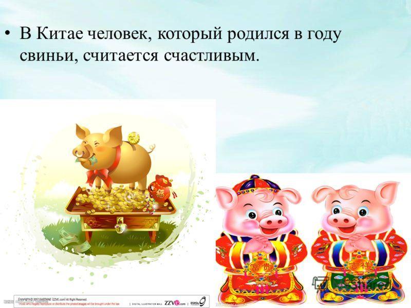 стихи рожденному в год свиньи родник