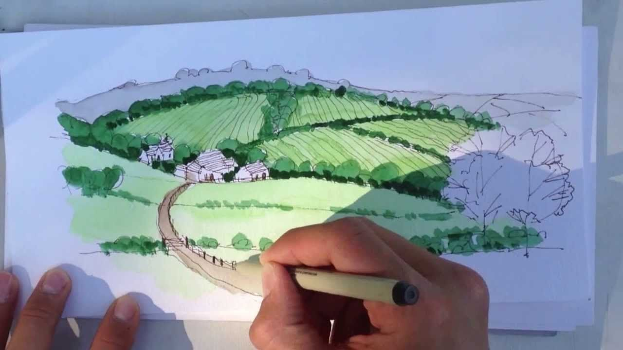 Linescapes Drawing Landscape Architecture How To Draw With