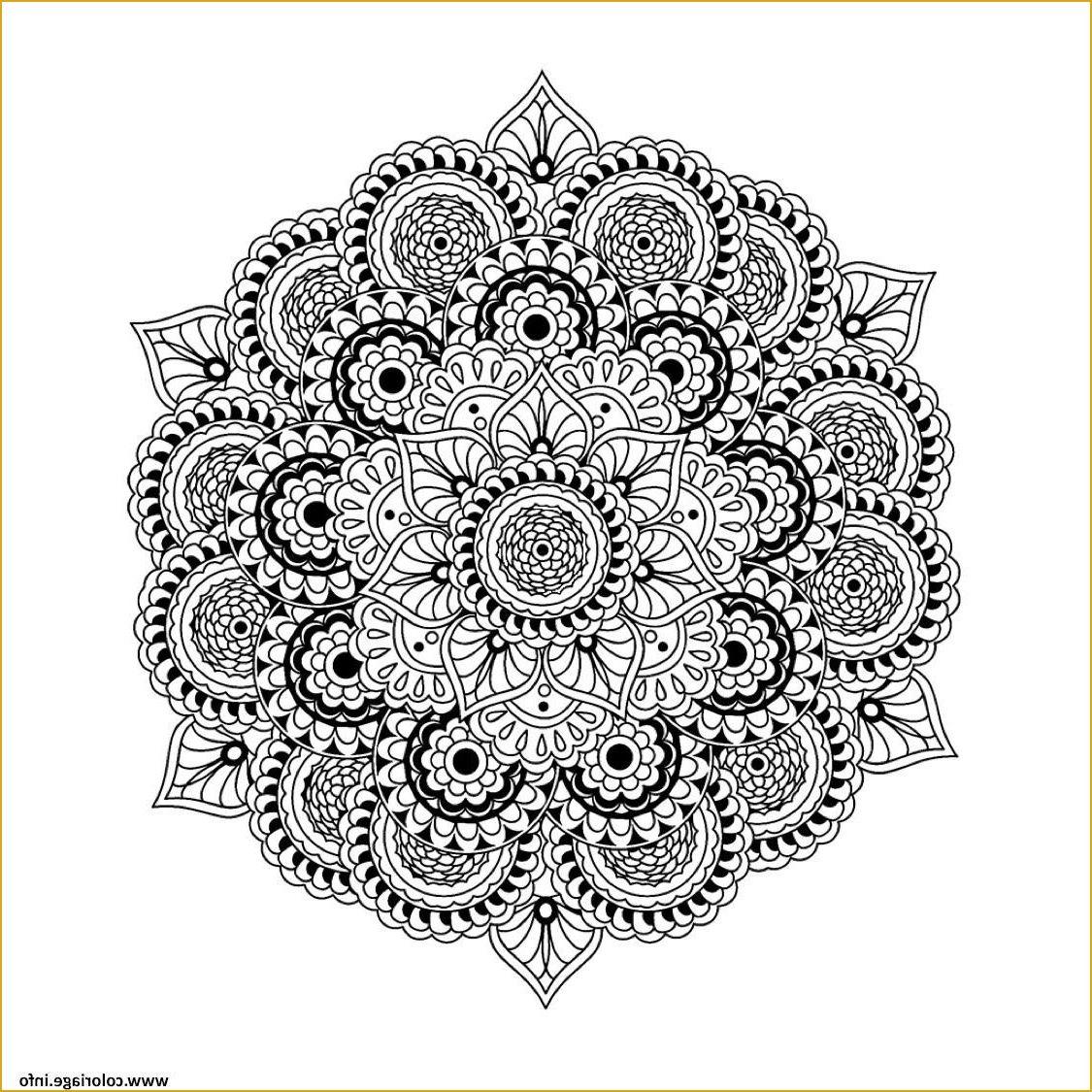 15 Inspirant De Mandala Cm2 Galerie en 2020 | Mandala difficile, Coloriage mandala, Mandala à ...