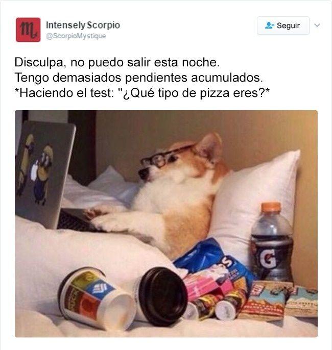 Fotos Graciosas Memes Chistes Chistesmalos Imagenesgraciosas Humor Funny Pictures Dog Memes Corgi
