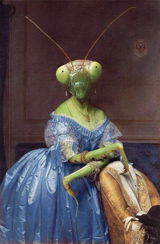 Lady Katydid in formal blue gown with headless husband stuffed as an armchair