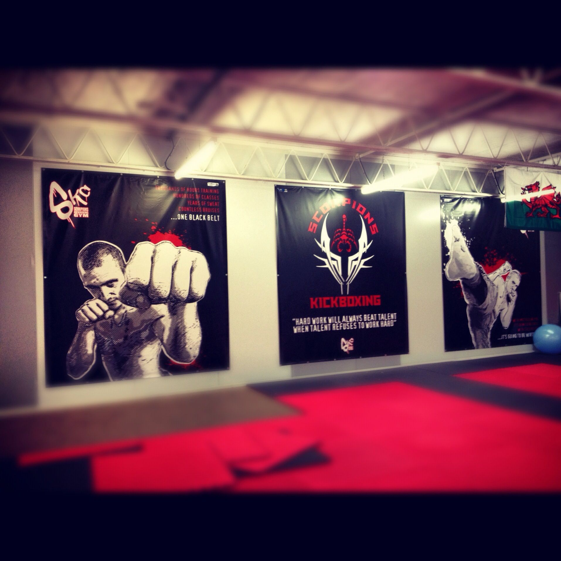Digitally printed banners for kickboxing gym business