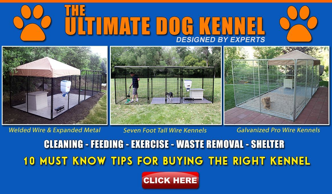 Dog Kennel Runs Online Store K9 Kennels Welded Heavy Duty Outdoor Dog Kennel Run Cage Pen House W Water Res In 2020 Dog Kennel Dog Kennels For Sale Luxury Dog Kennels
