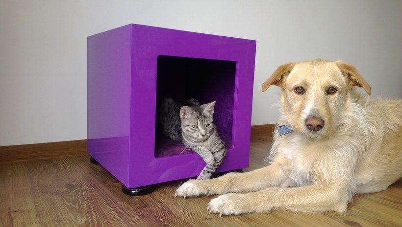 Strona główna - ASTADO MANUFAKTURA Meble dla zwierząt