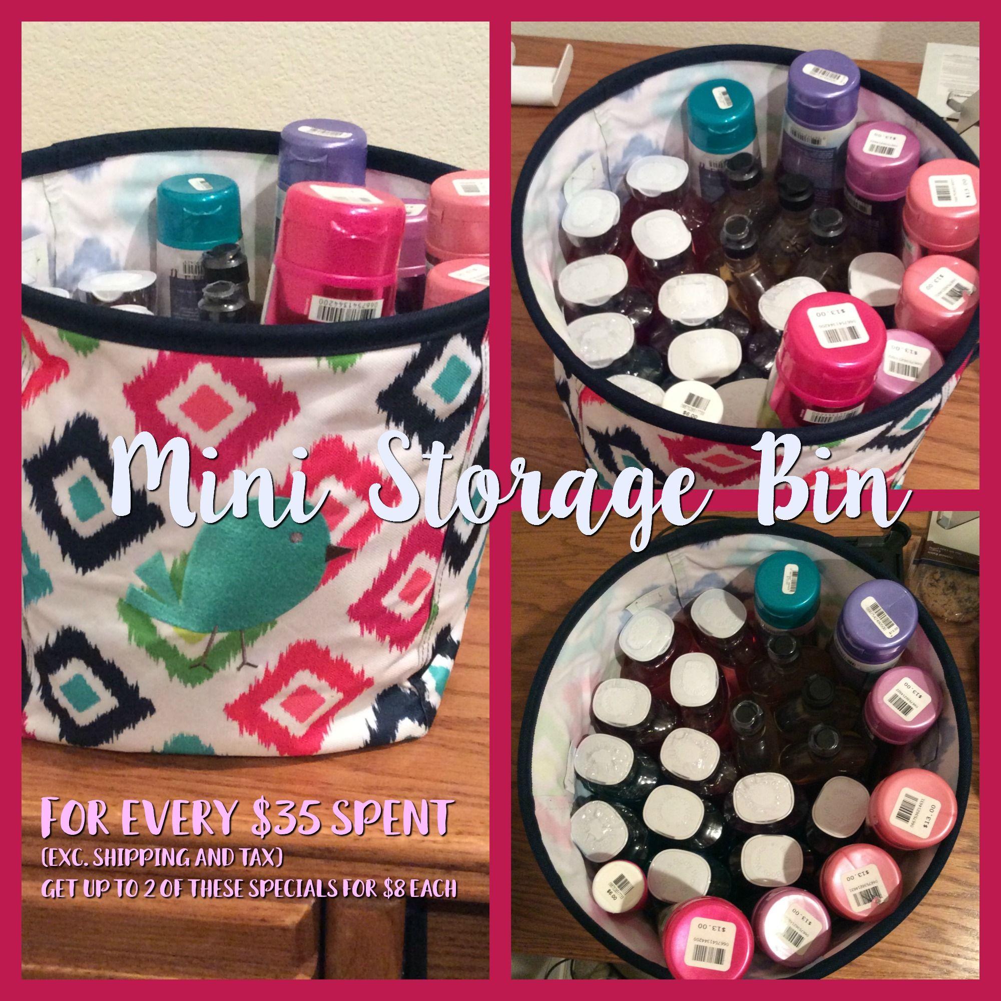 Mini Storage Bin Feb Special Thirty One Totes