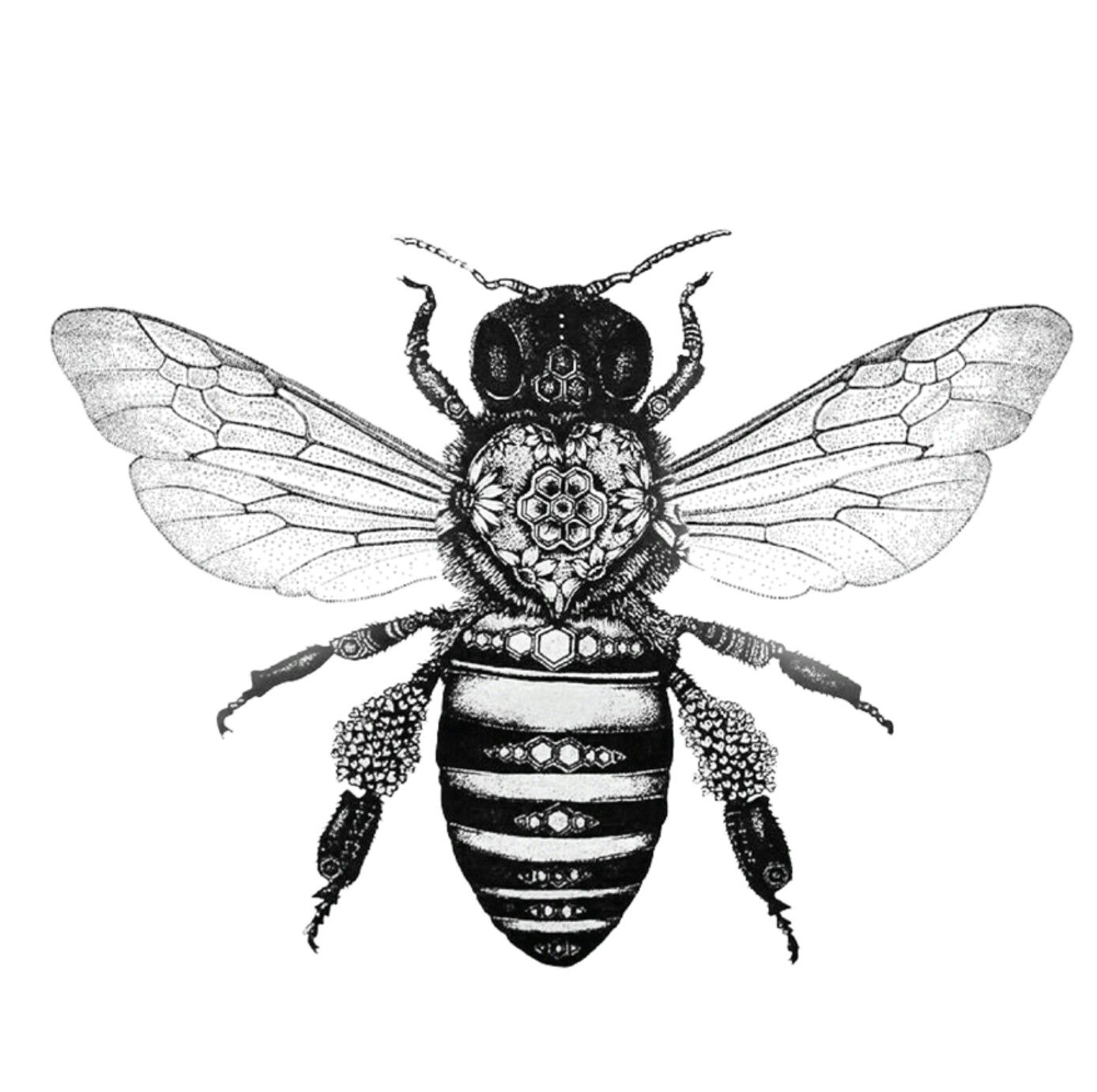 Bee art | Tattoos | Honey bee tattoo, Bee tattoo, Bee drawing