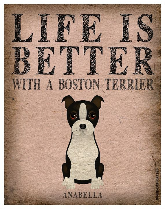 Life is Better with a Boston Terrier