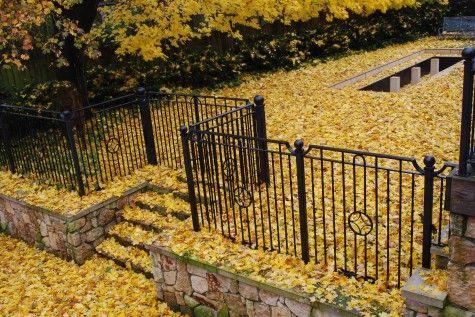 fall-leaves-dropping.jpg | Garden | Pinterest | Garden works ...