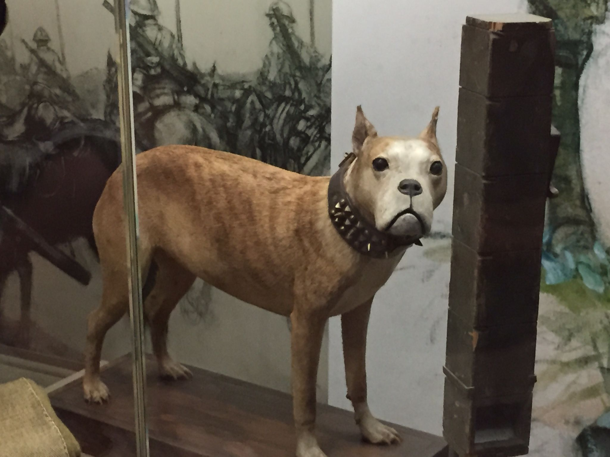 "The actual Sgt. Stubby in the ""Price of Freedom"" exhibit"