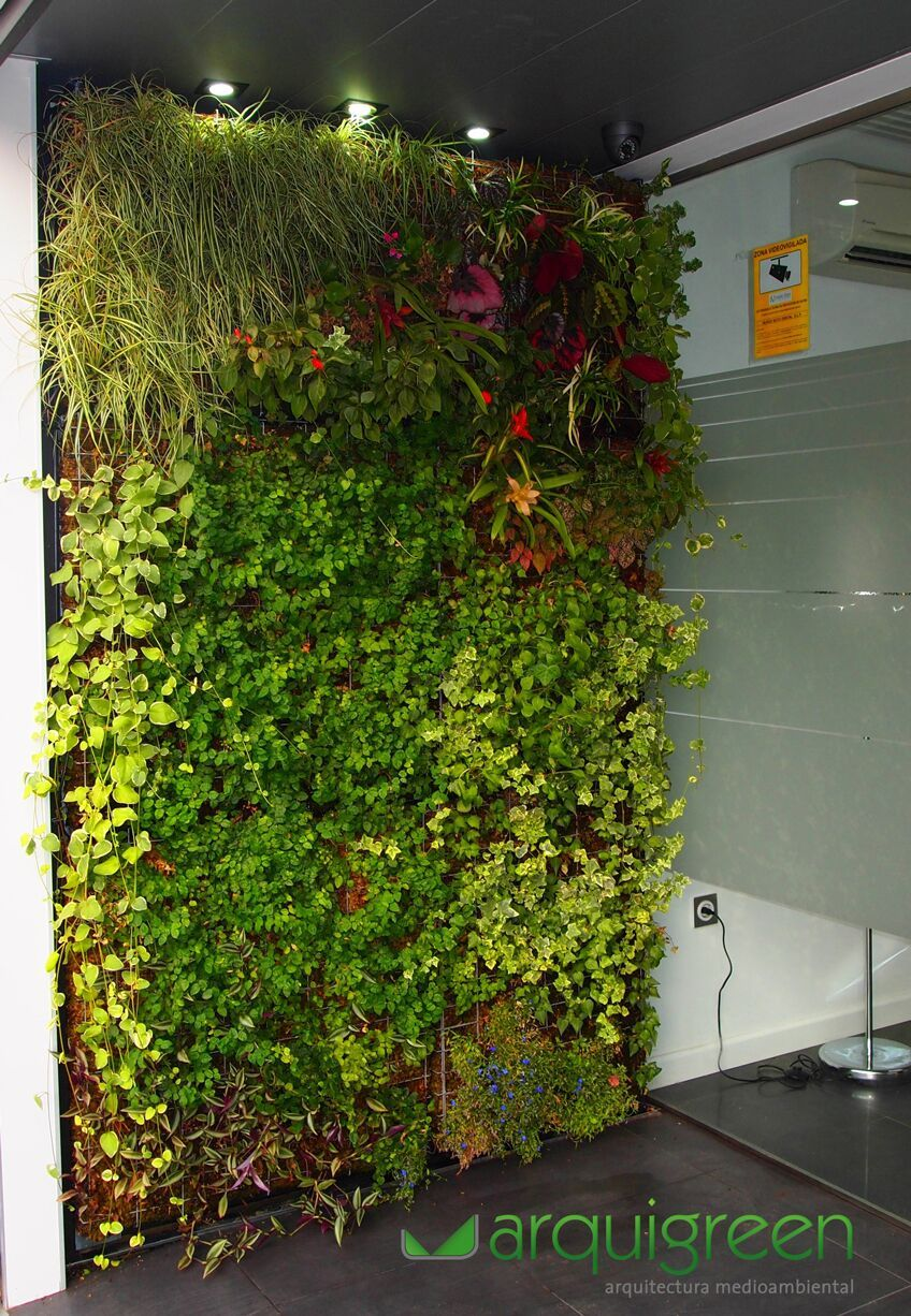 Jard n vertical para cl nica dental jardines pinterest for Ideas de jardines verticales