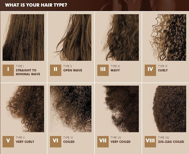 Natural Hair For Beginners Hair Blog On Hairstyles Products For Black Women Going Natural Hair Type Natural Hair Styles Hair Type Chart