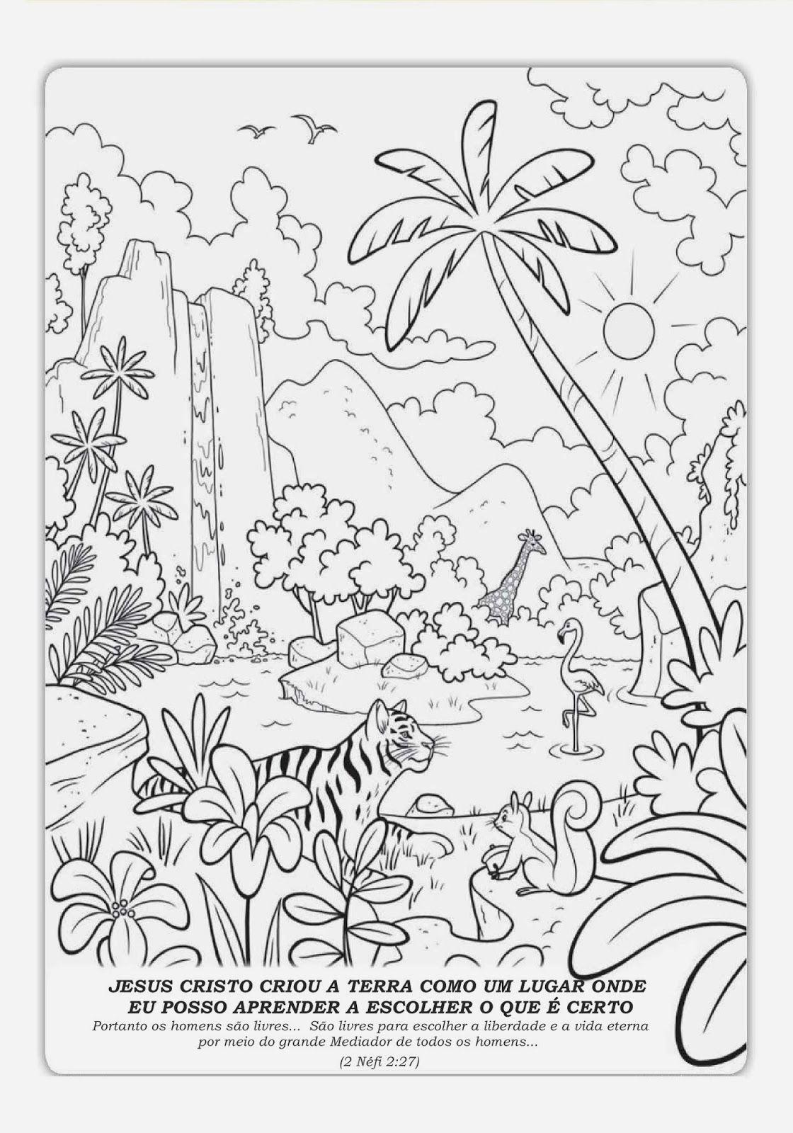 Jardim Encantado Colorir Google Search Desenhos Para Coloriri