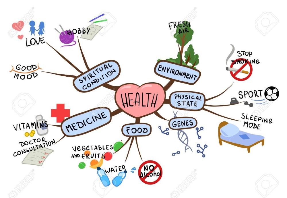 Mapa Mental Sobre El Tema De La Salud Y El Estilo De Vida Saludable Ilustración De Vector De Mapa Mental Aislado Sobre Fondo Blanco Estilo De Vida Saludable Vida Saludable Para