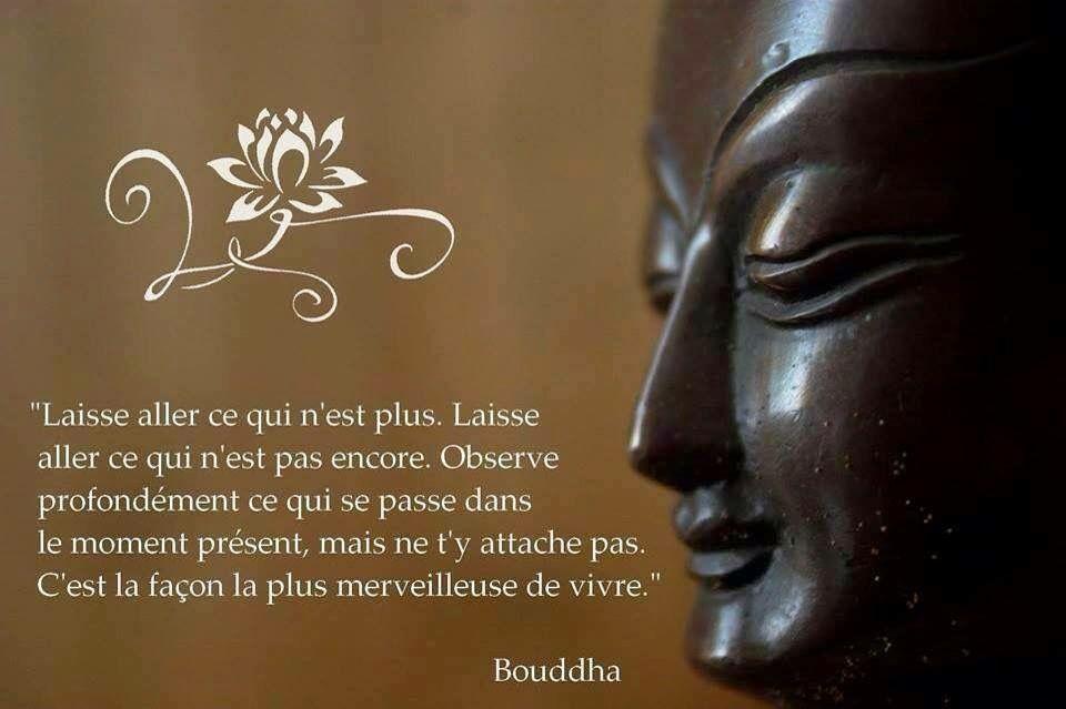 Pin By Jim Rudy On French Buddha Quote Buddha Zen