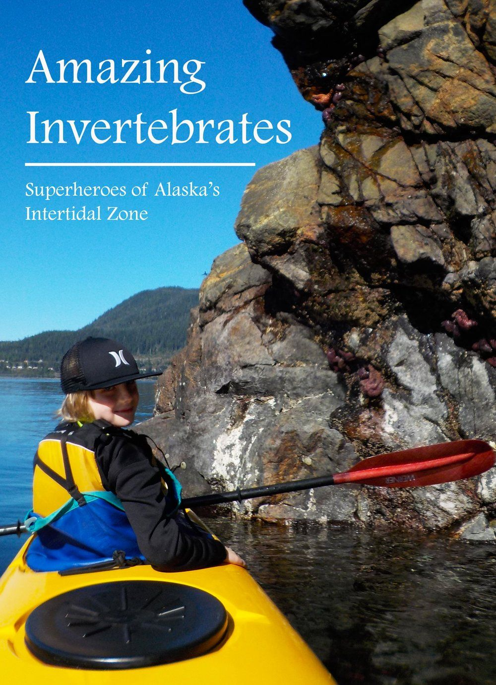 There are many interesting creatures to see by kayak at low tide in Southeast Alaska.