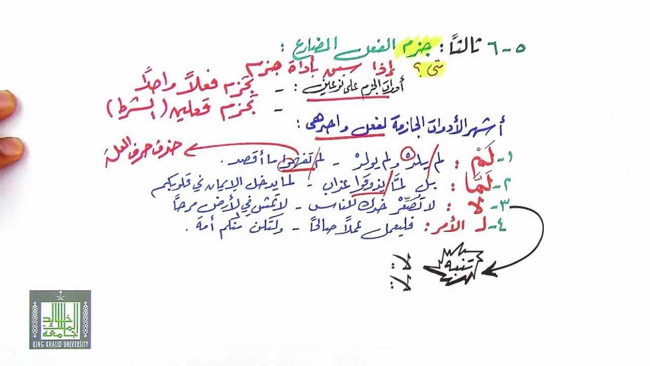 جزم الفعل المضارع 5 6 Arabic Calligraphy Calligraphy