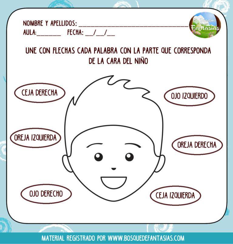 Fichas De Lateralidad Hoja 6 Ejercicios De Lateralidad Ninos De Preescolar Literatura Para Ninos