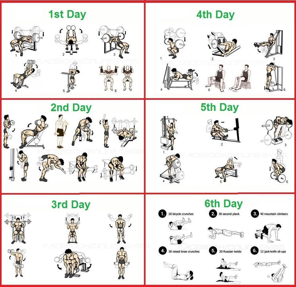Body building routine