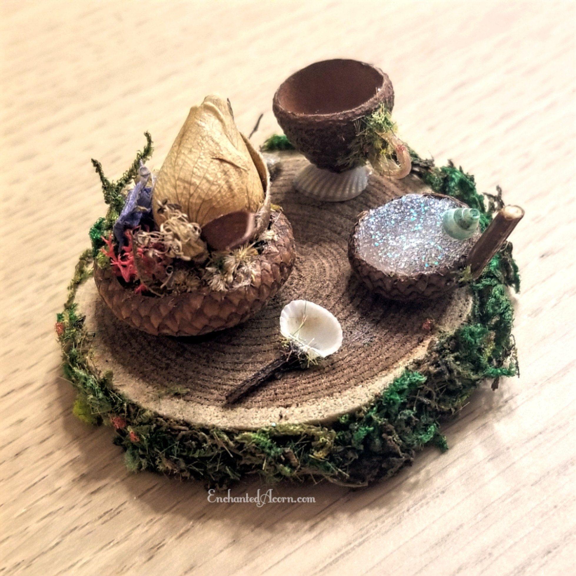Fall Decor Miniatures Fairy Garden Holiday Craft 101 Small Acorn Cap Buttons