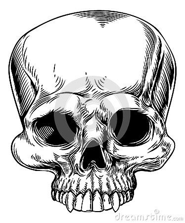 Skull Drawing - Download From Over 37 Million High Quality Stock Photos, Images, Vectors. Sign up for FREE today. Image: 42095405