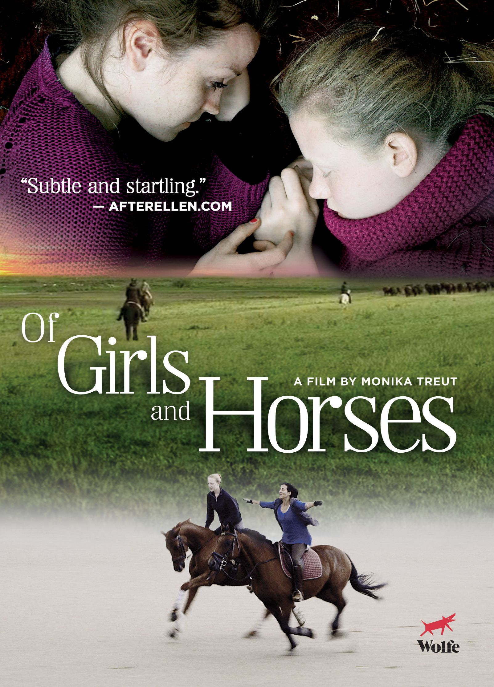 Full list of movies about horses 16