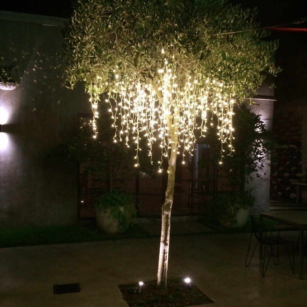 Icicle lights clear LED  3m outdoor Great for the garden