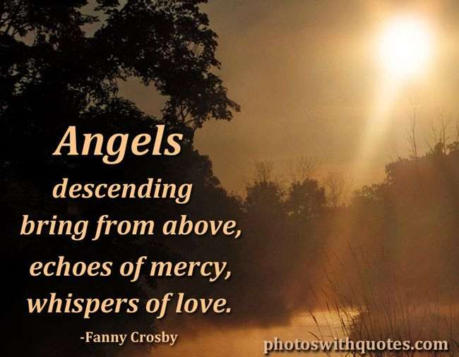angel of love quotes