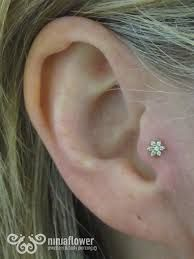 Image result for really small studs in second ear piercing #secondearpiercing Image result for really small studs in second ear piercing #secondearpiercing Image result for really small studs in second ear piercing #secondearpiercing Image result for really small studs in second ear piercing #secondearpiercing Image result for really small studs in second ear piercing #secondearpiercing Image result for really small studs in second ear piercing #secondearpiercing Image result for really small st #secondearpiercing