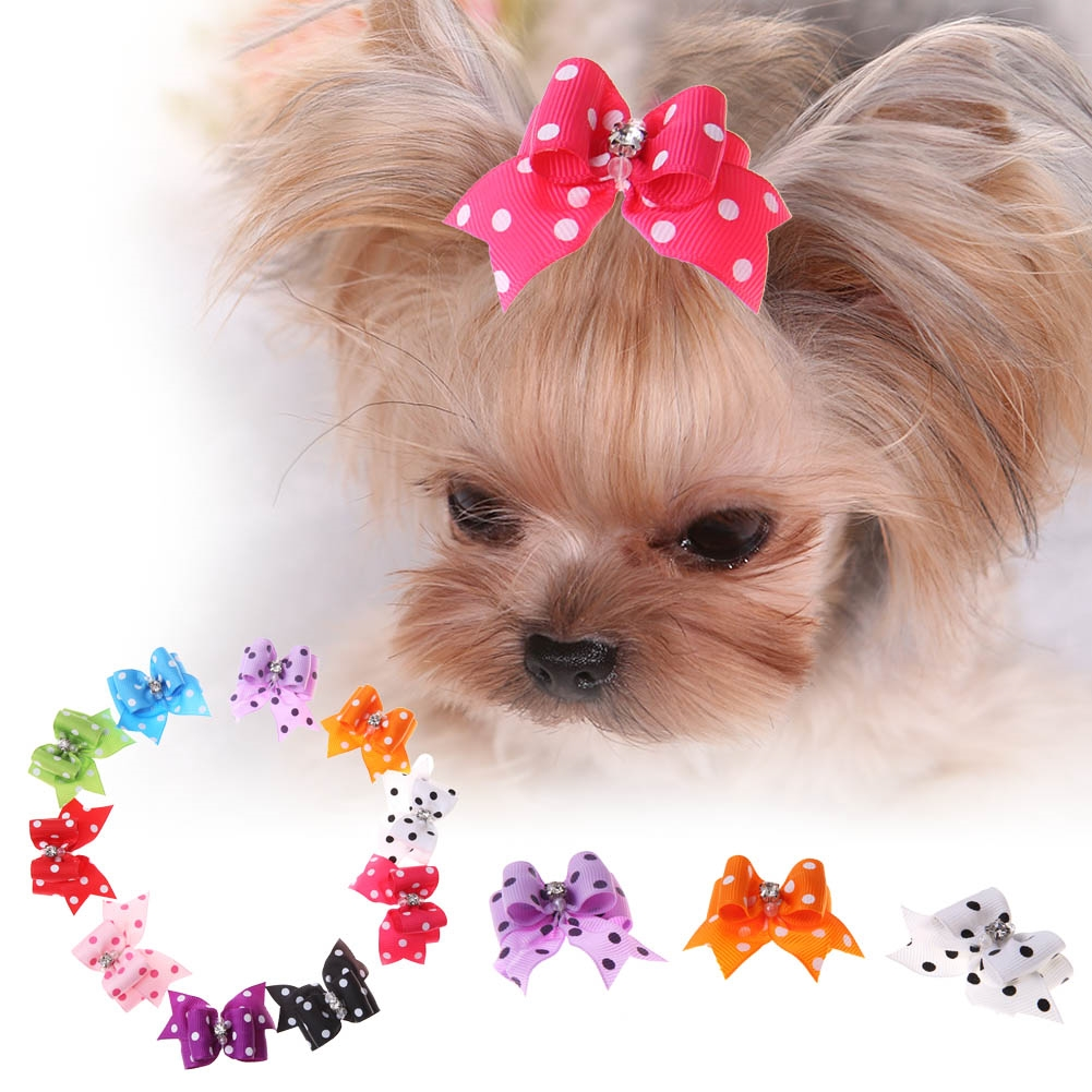 Must see Hair Bows Bow Adorable Dog - 4274b8220538e7297b136db95cc0d088  Pictures_877673  .png