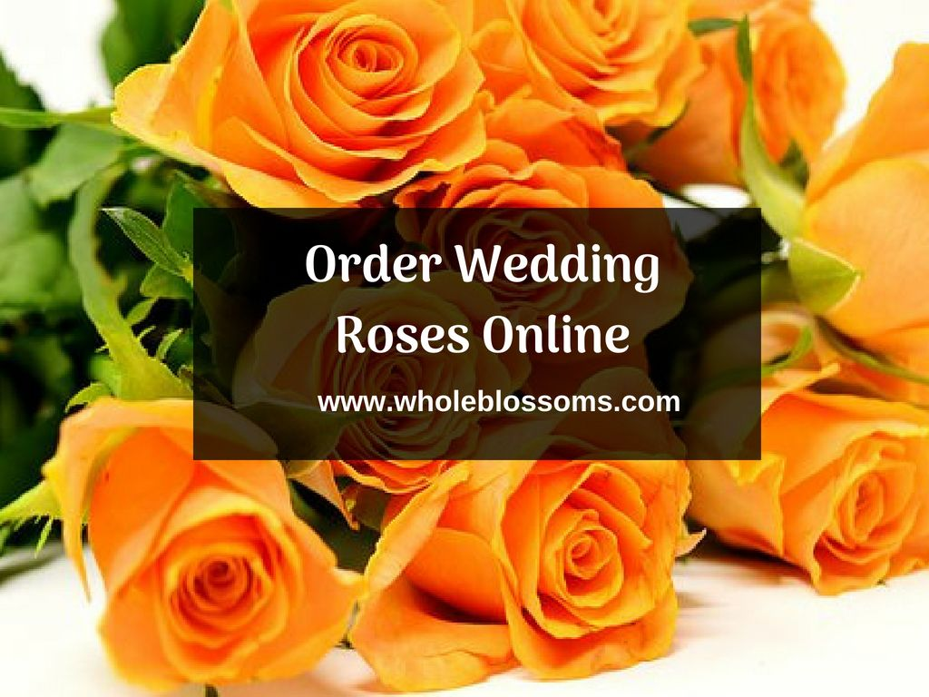 Roses Are The Best Selection Of Wedding Decorations They Provide