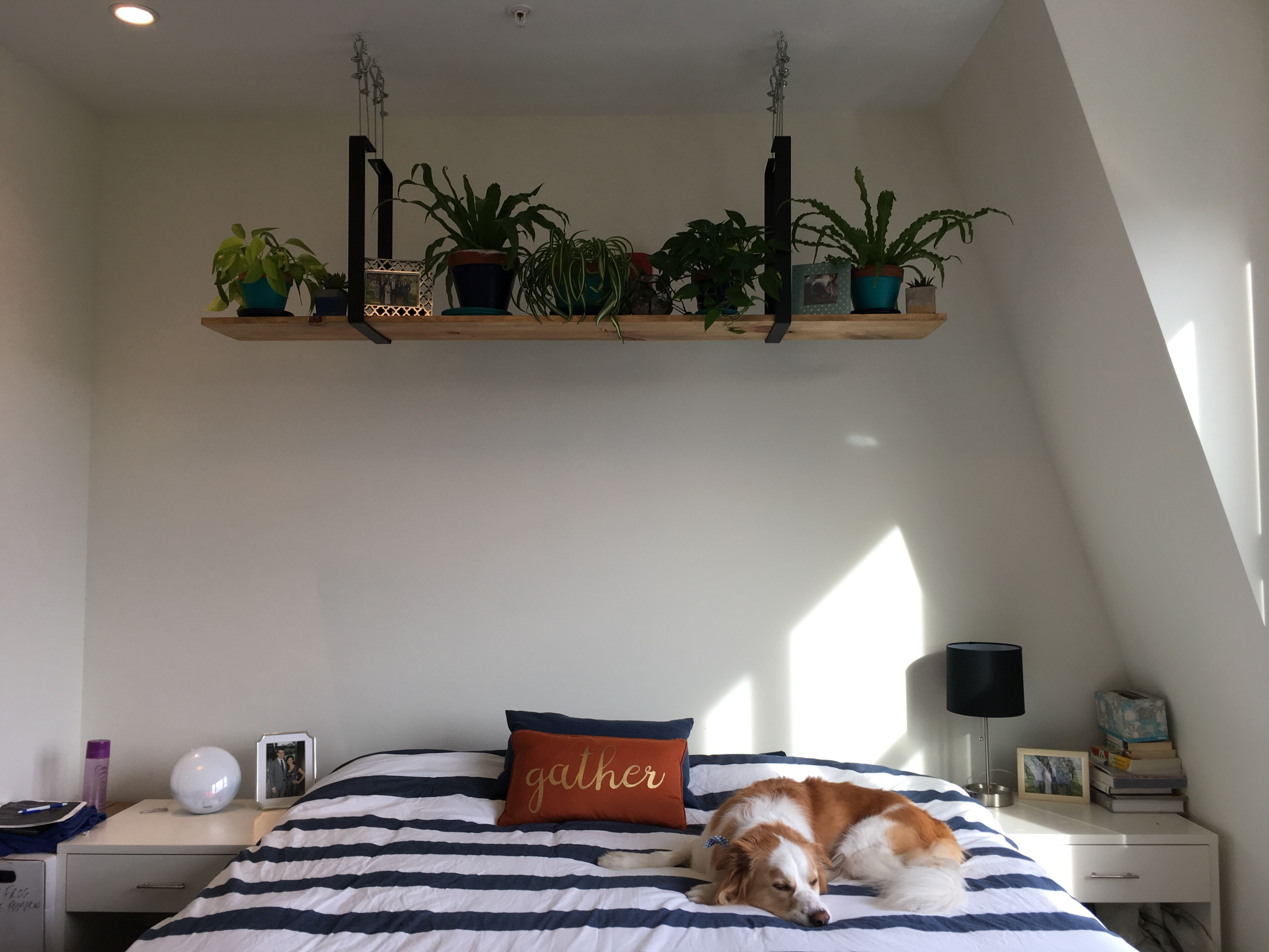 Diy Hanging Ceiling Shelf Using Iron Posts Wire Cabling And A