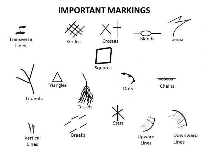 редкие знаки на руках в картинках длины
