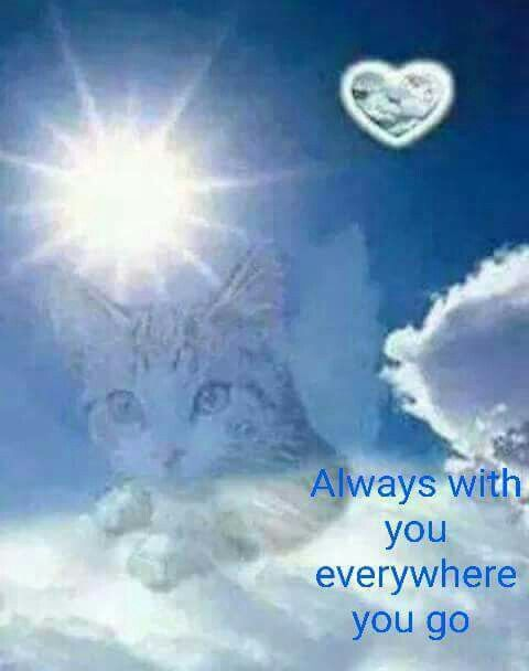 Always with you...