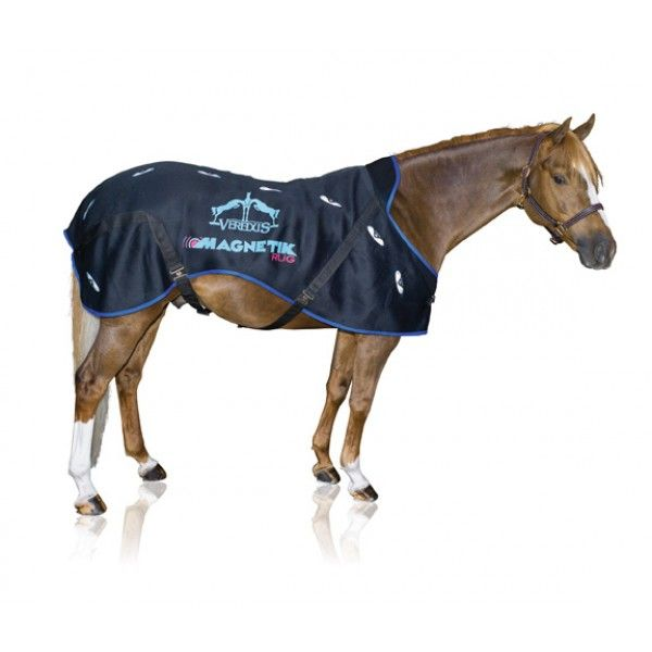 Set Selle Complete Nonsolocavallo Selleria Online Negozio Per Cavalli E Articoli Equitazione Selle Equitazione Sella Inglese