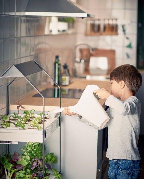 Ikea introduce a hydroponic indoor gardening kit garden ikea introduce a hydroponic indoor gardening kit workwithnaturefo