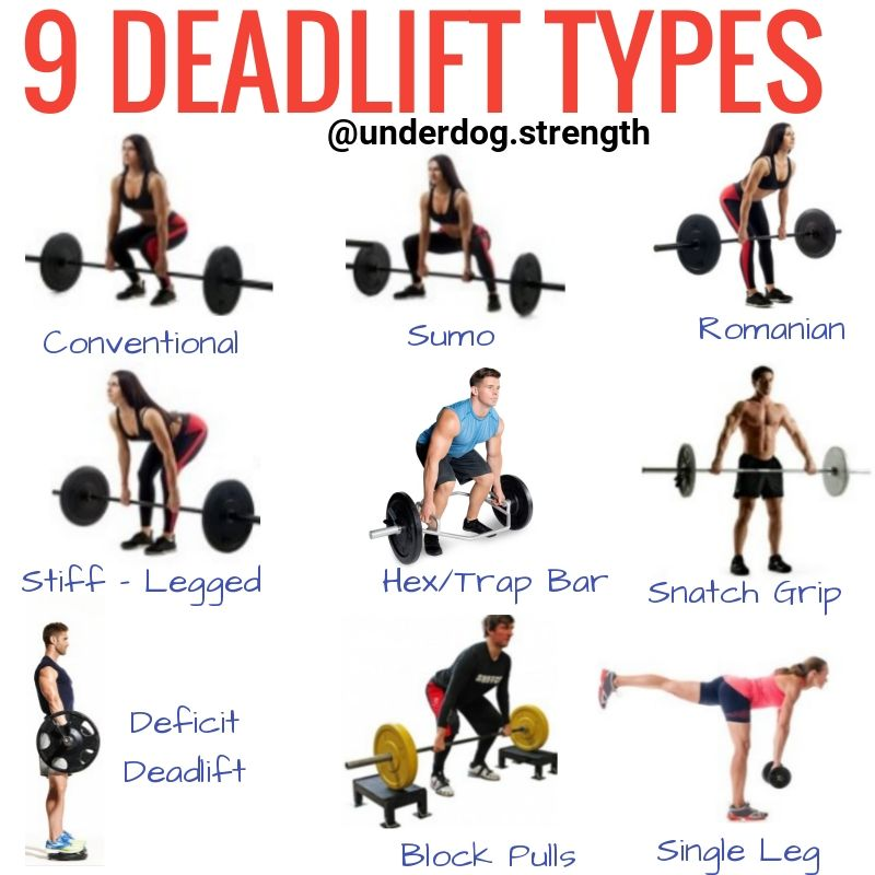 How to Deadlift Properly (For Beginners | Barbell workout ...